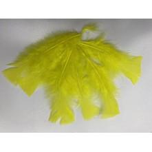 Tek Kaz Tüyü Sarı