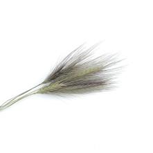 Kurutulmuş Çiçek  - 5 Adet